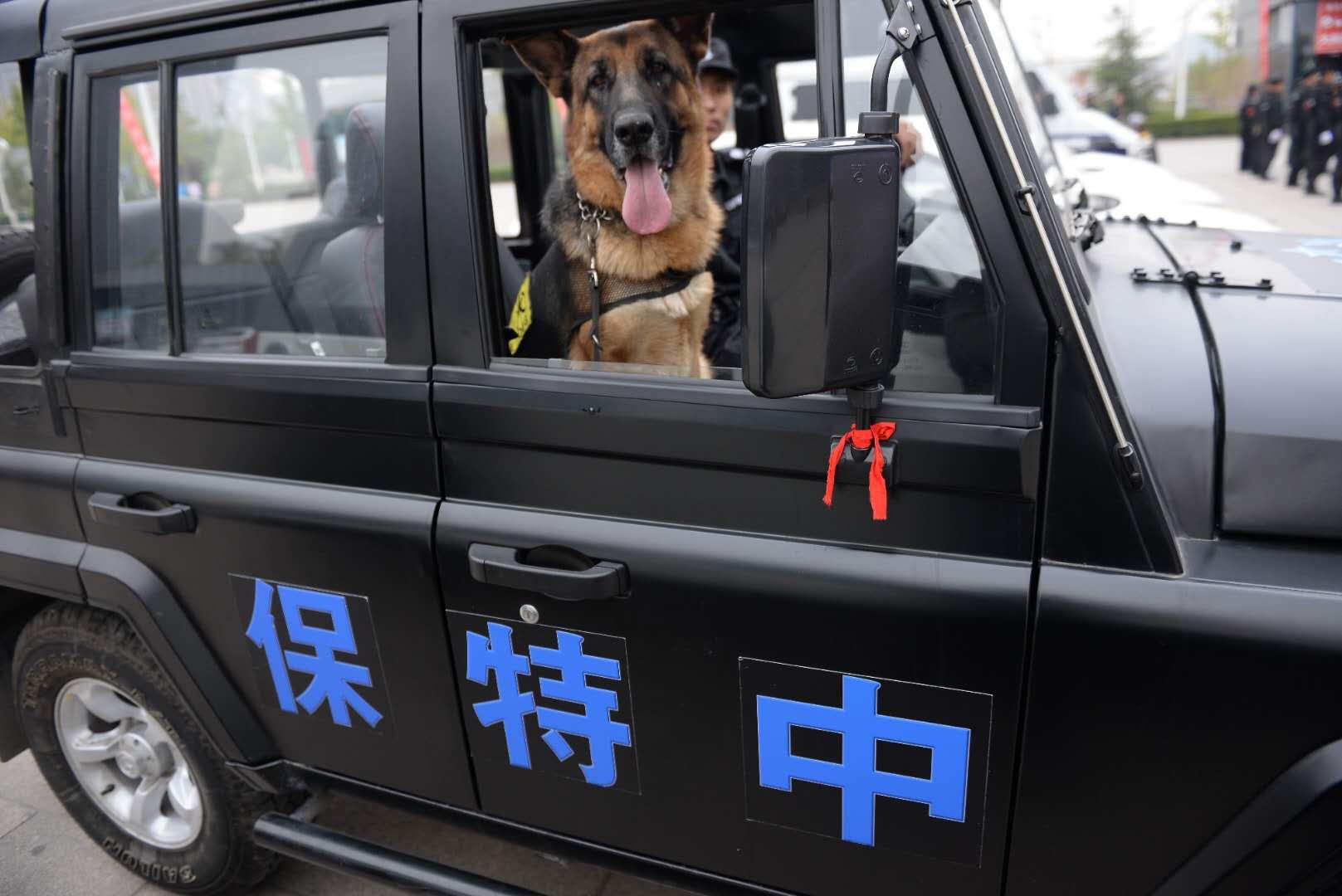 青海安保公司挂靠